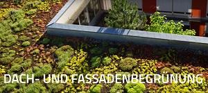 Dach- und Fassadenbegrünung